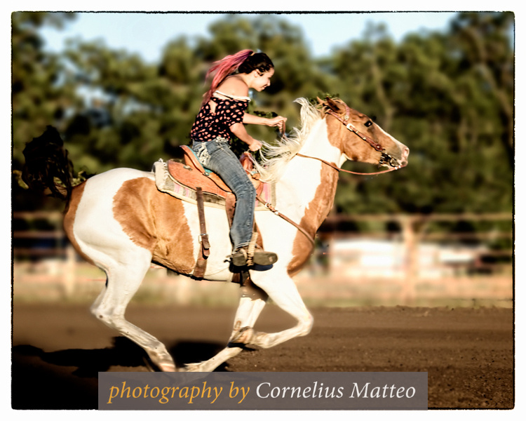 Gold Dust Arena Barrel race